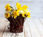 Daffodils in a twig vase — Stock Photo