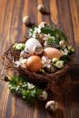 Vejce v hnízdě — Stock fotografie