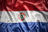 Shining paraguayan flag — Stock Photo