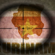 Sniper scope aimed at the vintage surinamese flag and map — Stock Photo #75067011