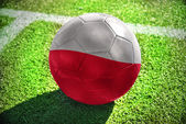 Football ball with the national flag of poland lies on the green field near the white line — Stock Photo