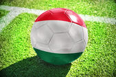 Football ball with the national flag of hungary on the field — Stock Photo