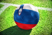 Football ball with the national flag of slovenia on the field — Stock Photo