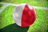 Futbol topu ile sahada Malta bayrağı — Stok fotoğraf