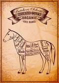 Vector diagram cut carcasses horse — Stock Vector