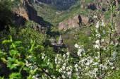 Armenian monastery of Geghard in flowers — Stock Photo