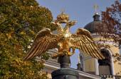 The double-headed Russian eagle on the gun barrel. — Stock Photo