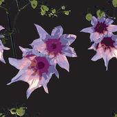 Motif floral — Vecteur
