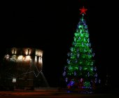 Night view of Christmas tree with red star — Stock Photo