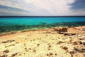 Beautiful rocky coast with turquoise sea. Majorca. — Stock Photo