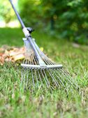 Autumn raking leaves. — Stock Photo