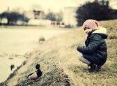 Child feeding ducks. — Stock Photo