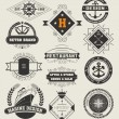 Vintage Insignias , logotypes set. — Stock Vector #62680431