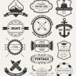 Vintage Insignias, logotypes set. — Stock Vector #62680827