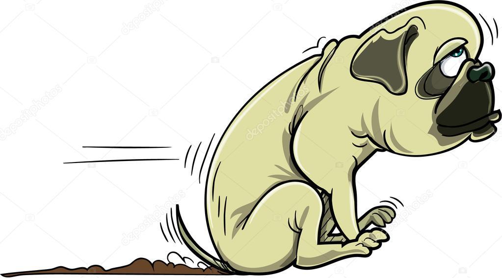 Perro Pug De Dibujos Animados Raspar Su Culo