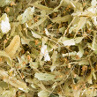 Dried linden flowers — Stock Photo #68379463