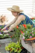 Woman potting plants on a hot spring day — Stockfoto