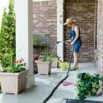 Woman gardener standing watering new plants — Stock Photo #72370023