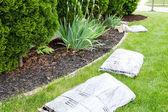 Garden work in spring mulching the plants — Stock Photo