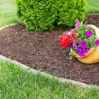 Colorful flowers in a flowerpot in a garden — Stock Photo #73707659