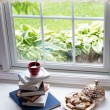 Coffee on Piled Books and Pastries at the Window — Stock Photo #75344435