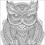 Decorative ornamental Owl background. — Stock Vector #60056667