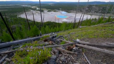 Grand Prismatic Yellowstone National Park — Stock Video