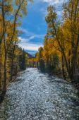 Crystal River Colorado Fall Colors — Stock Photo