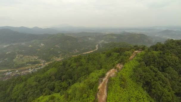 Aerial view of tropical rain forest — Vídeo de stock
