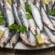 Fresh sardines — Stock Photo #64525381