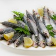 Fresh sardines — Stock Photo #64525869