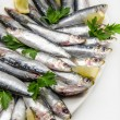 Fresh sardines — Stock Photo #64526663