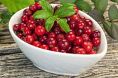 Fresh cranberries in white bowl with green leaves — Foto de Stock