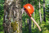 Ax carved in tree with helmet in the forest — ストック写真