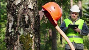 Hacha tallada en árbol con casco — Vídeo de stock