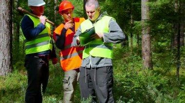 Forest Officer explains assigned work — ストックビデオ