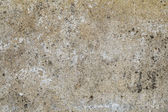 Old brown stone wall with mold — Stockfoto
