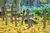 Old iron crosses an abandoned cemetery — Stock Photo