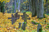 Old crosses on graves with autumn leaves around — Stock Photo