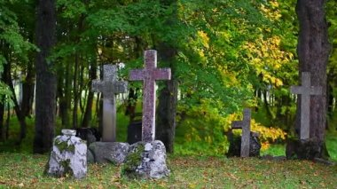 Old stone crosses on graves with autumn trees around — Stock Video