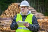 Forest engineer with tablet PC near piles of logs — Stockfoto