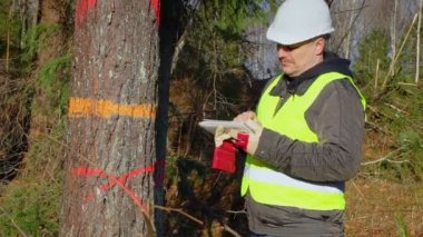 Forest engineer with a tablet PC near tree in forest — Vídeo de stock