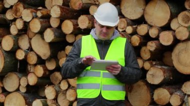 Forest Officers working with tablet PC near pile of logs — Stok video
