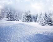 новогодний фон с заснеженные ели — Стоковое фото
