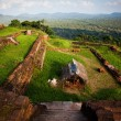 View from Sigiriya Lion Rock Fortress in Sri Lanka — Stock Photo #65110071