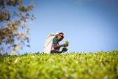 MASKELIYA, SRI LANKA - JANUARY 4 : Female tea picker in tea plantation in Maskeliya, January 4, 2015. Directly and indirectly, over one million Sri Lankans are employed in the tea industry. — Stock Photo