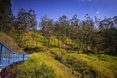 Train from Nuwara Eliya to Kandy among tea plantations in the hi — Photo