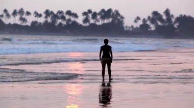 Woman walking on the beach at sunset, Sri Lanka — Stock Video