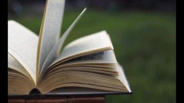 Rüzgar yeşil arka plan üzerinde eski kitap sayfaları çevirme — Stok video