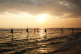 Silhouettes of the traditional stilt fishermen at sunset near Ga — Stock Photo
